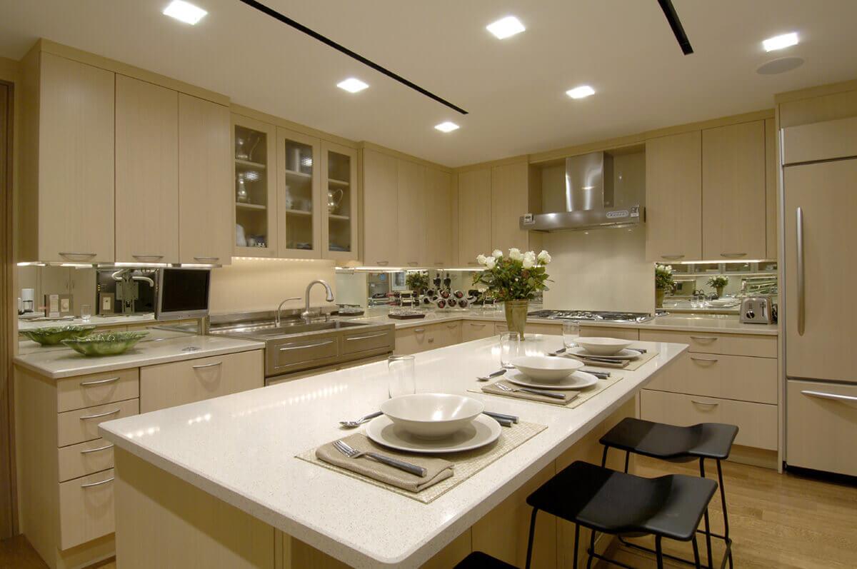 Luxury Condo Kitchen Design