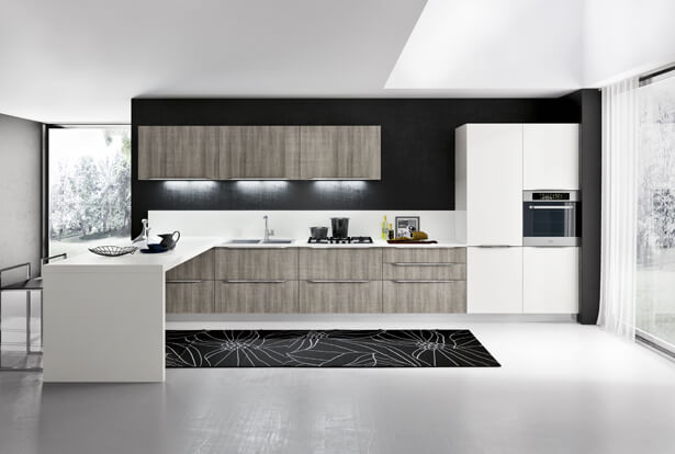 Modern kitchen design in two colors
