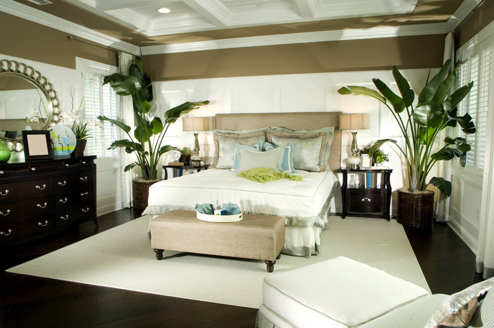 Modern and luxury master bedroom paint ideas with dark furniture as well as dark floor. White carpet and potted tall plants in every corner of the bedroom. Large oval mirror witch reflects the light coming from the large white windows that are in the doors.