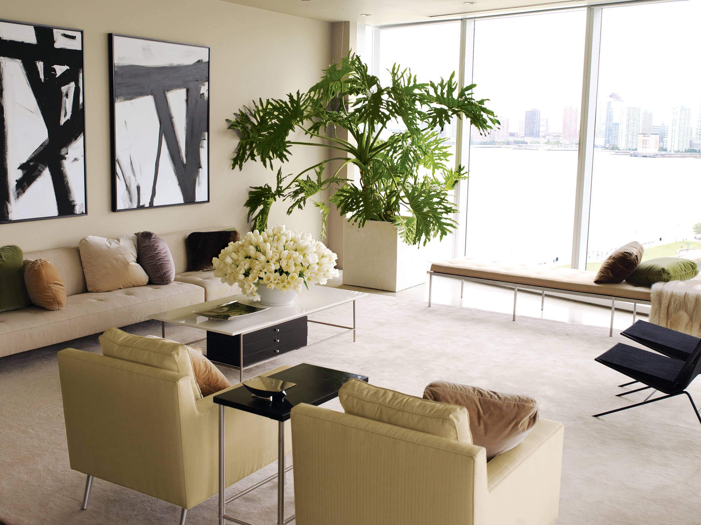 Living Rooms Houseplants
