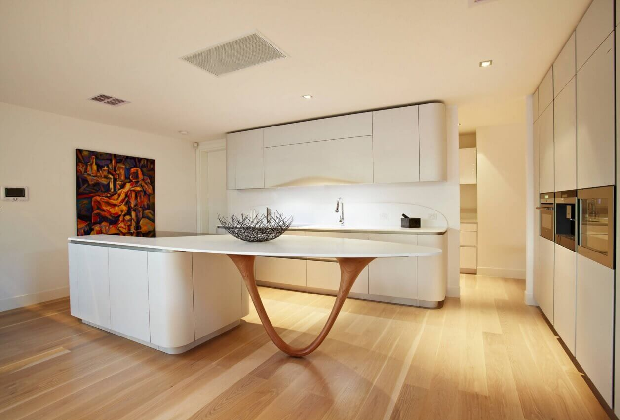 Contemporary Kitchen Designs Get the Look