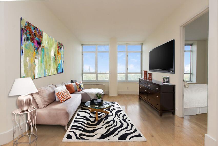 Cozy Contemporary Living Room With Zebra Area Rug