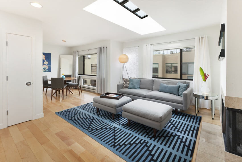 Small Modern Living Room With Skylight